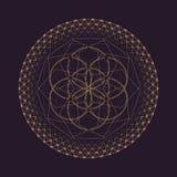 Vector mandala sacred geometry illustration Royalty Free Stock Images
