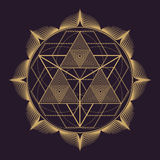 Vector mandala sacred geometry illustration royalty free illustration