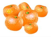 Vector mandarin. Vector drawing of orange citrus, mandarin (tangerine stock illustration