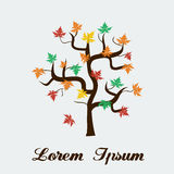 Vector maple tree autumn leaves Canada. Flat color eps10 Royalty Free Stock Photos
