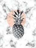 Vector marble texture design with pineapple, black and white marbling surface, modern luxurious background. Vector illustration Royalty Free Stock Photography