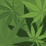 Vector marijuana background Stock Photo