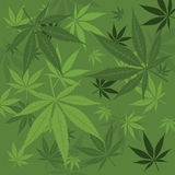 Vector marijuana background Royalty Free Stock Photography