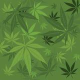 Vector marijuana background Royalty Free Stock Photography