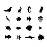 Vector marina de los animales de la vida de mar Imagen de archivo