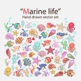 Vector marine life Royalty Free Stock Photos
