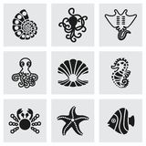 Vector marine life icon set Stock Photography