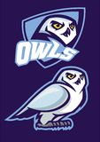 Mascot of white owl with sport style. Vector of mascot of white owl with sport style Royalty Free Stock Photos