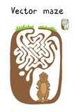 Vector Maze, Labyrinth with Marmot. Stock Images