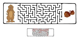 Vector Maze, Labyrinth with Marmot and Nut. Royalty Free Stock Photo