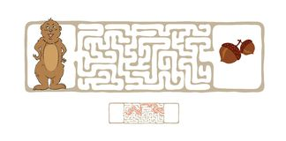 Vector Maze, Labyrinth with Marmot and Nut. Royalty Free Stock Image
