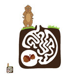 Vector Maze, Labyrinth with Marmot and Nut Royalty Free Stock Photos