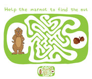 Vector Maze, Labyrinth with Marmot and Nut Royalty Free Stock Photography