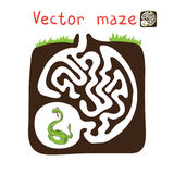 Vector Maze, Labyrinth with Snake Stock Image
