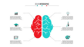 Vector medical and healthcare infographic. Vector brain left analytical and right creative hemispheres infographics. Medical and healthcare template for Royalty Free Stock Photography