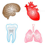 Vector medical icons