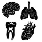 Vector medical icons. Black and white. Simply change. Other medical icons you can see in my portfolio Royalty Free Stock Photos