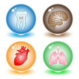 Vector medical icons Royalty Free Stock Photography