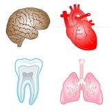 Vector medische pictogrammen Royalty-vrije Stock Foto's