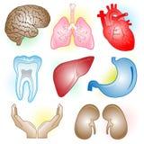 Vector medische pictogrammen Stock Foto's
