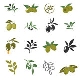 Vector mediterranean olive branches icons with oil drops, leaves and olives isolated on white background. Olive for oil and illustration of organic plant with Stock Images