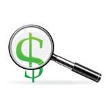 Vector meer magnifier en teken van dollar Royalty-vrije Stock Foto's