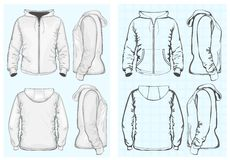 Men's hooded sweatshirt with zipper. Vector. Men's hooded sweatshirt with zipper (back, front and side view). No mesh. Different variants: outlines and detailed Royalty Free Stock Photos