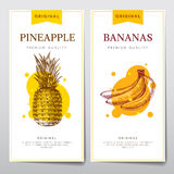 Vector menus on the theme of fruits. Pineapple and bananas on the flyers Stock Image