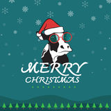 Vector merry christmas greeting cow card Stock Image