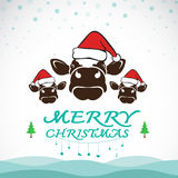 Vector merry christmas greeting cow card Royalty Free Stock Images