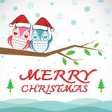 Vector merry christmas greeting owl card Stock Photos