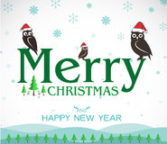 Vector merry christmas greeting owl card Stock Image