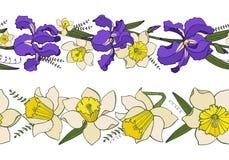 Vector met naadloze bloemen de lentegrenzen die wordt geplaatst stock illustratie