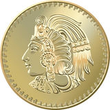 Vector Mexican coin with the image of the Indian Royalty Free Stock Photos