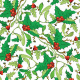 Vector Mistletoe Holly Berries Seamless Pattern Royalty Free Stock Photography