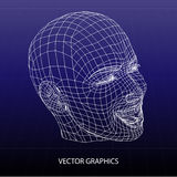 Vector model of face Royalty Free Stock Image