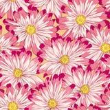 Vector. Modelo floral inconsútil stock de ilustración