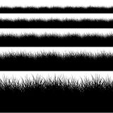Vector modern black grass set on white Royalty Free Stock Photography