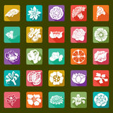 25 vector modern flowers icons - sets Royalty Free Stock Photography