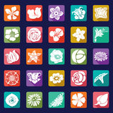 25 vector modern flowers icons - sets Royalty Free Stock Image
