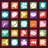 25 vector modern flowers icons - sets Royalty Free Stock Photos