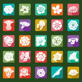 25 vector modern flowers icons - sets Stock Photos