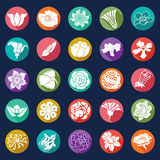 25 vector modern flowers icons - sets Stock Photo