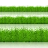 Vector modern green grass set Stock Photo