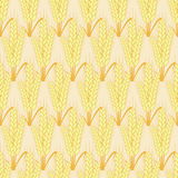 Vector modern wheat seamless background Stock Images