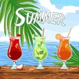 Vector mojito, strawberry, Mai Tai orange alcohol cocktails. Booze for sunny party. Beach bar menu set. Quote Summer Template design banner. Vector mojito stock illustration