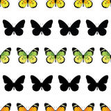 Vector Monarch Butterfly Stripes Seamless Pattern Stock Photography