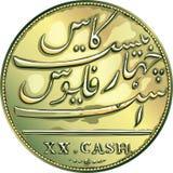 Vector money gold coin twenty Madras caches Stock Photo