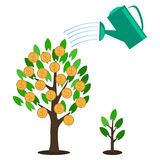 Vector money tree concept in flat style Stock Photo
