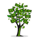 Vector money Tree Stock Images